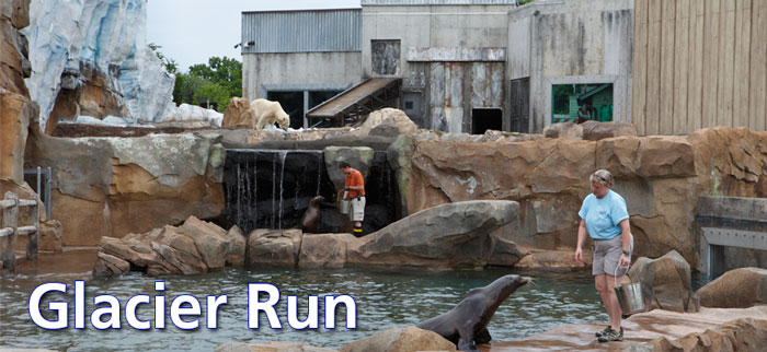 Glacier Run at the Louisville Zoo